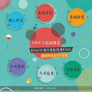 DSE中文說話訓練