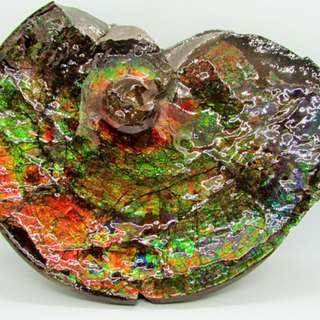 加拿大斑彩螺 班彩螺 斑彩石 原石 祼石 风水摆件 摆设 李居明