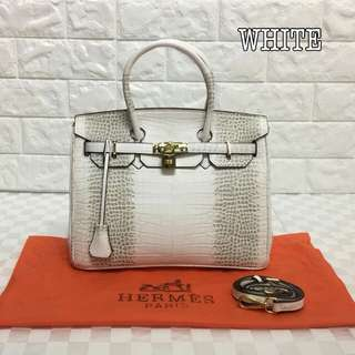 Hermes Birkin White Color