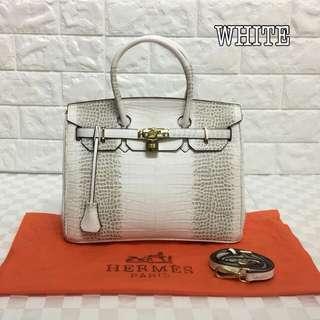 Hermes Birkin White Color