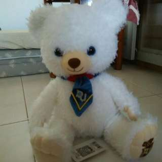 Preloved white teddy bear (35cm)