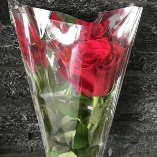 Red Rose Late Valentine's Day Gift