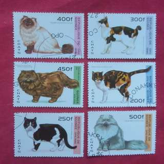 CATS REPUBLIC DE GUINEE STAMPS 1996