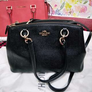 Coach Handbag (small)