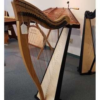 34 Strings Ravenna Full Lever Harp (For Exam use)