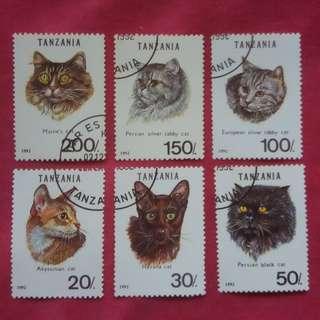 TANZANIA CATS 1992