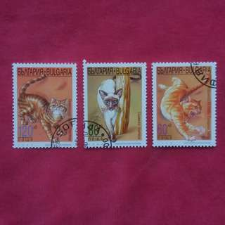 BULGARIA CATS STAMP 1998