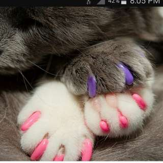20 pcs cats/dogs nail cover anti scratch