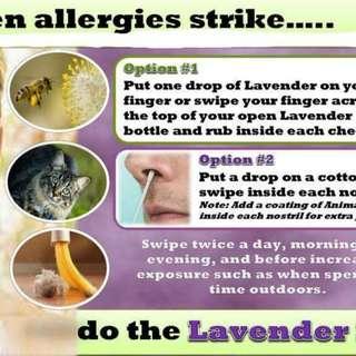 YL Lavender EO - 2
