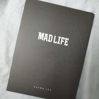 MAD LIFE BY SHAWN LEE
