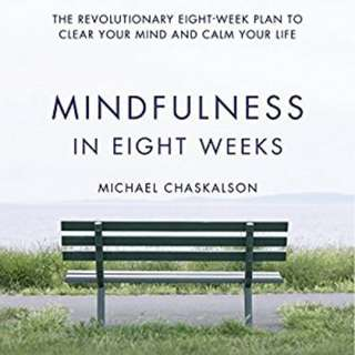 eBook - Mindfullness in Eight Weeks by Michael Chakalson