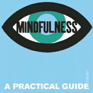 eBook - Introducing Mindfullness: A Practical Guide by Tessa Watt