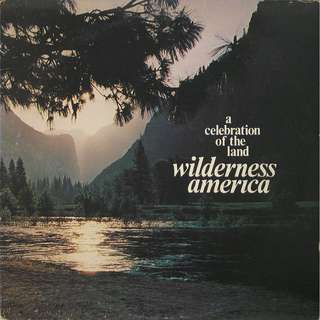 Wilderness America Vinyl LP, used, 12-inch original (mostly USA) pressing