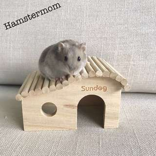 Hamster Wooden Bridge Hideout House Toy