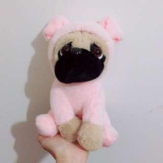全新 巴哥犬 巴哥狗 變裝偽裝系列娃娃 小豬🐷