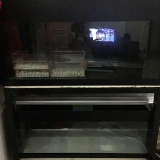 Used fish tank