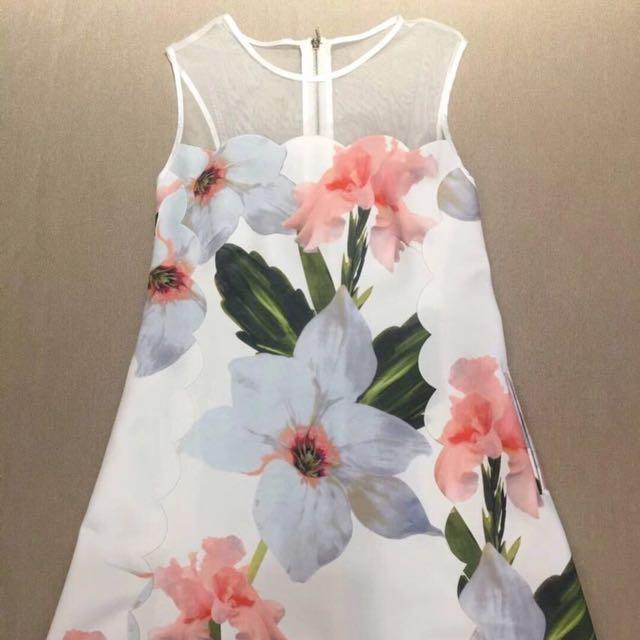 73060615701 Ted Baker caprila chatsworth bloom scallop dress