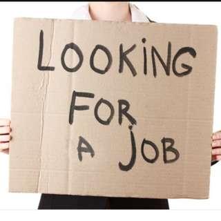 Looking for Online Job