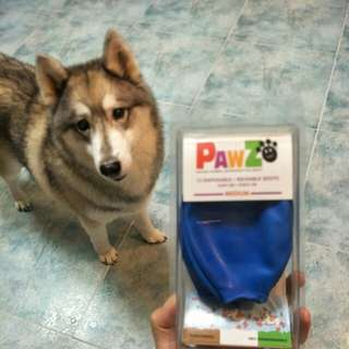 Pet shoe (Pawz water proof Dog boots)