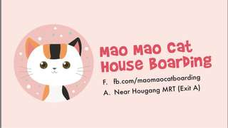 Home cat boarding can book now for March onwards