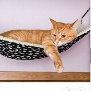 Brand New Cat Hammock / Pet Accesories / Soft Toy  2pcs for $12