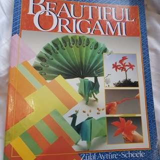 Origami, Beautiful Origami book