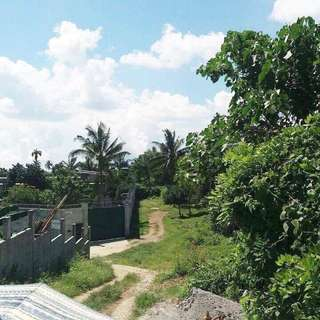 Tagaytay Lot 564 sqm