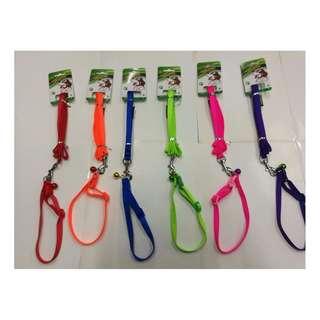 Single Collar with leash