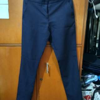 Lucky Navy Blue Pants