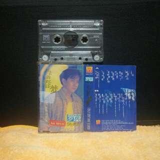 罗宾:过去的春梦,(1995) 南方卡带