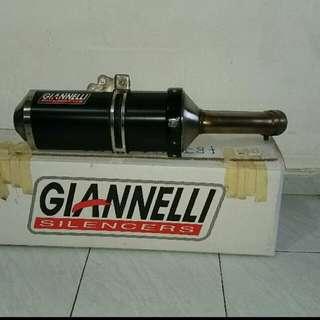 Yamaha FZ8N/S Street legal Gianelli Exhaust