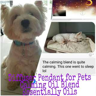 Diffuser Pendant and blends for Pets