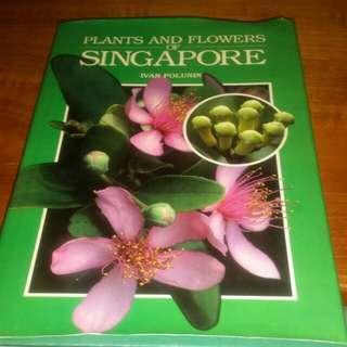 Plants & Flowers of Singapore