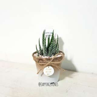 Grow With Me Cactus