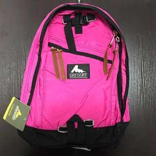 Gregory day pack-pink