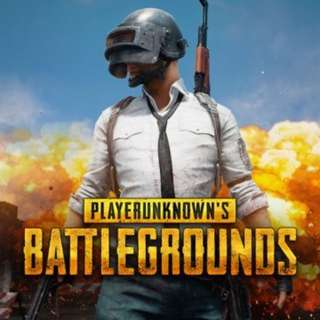 (STEAM) PLAYERUNKNOWN'S BATTLEGROUNDS PUBG