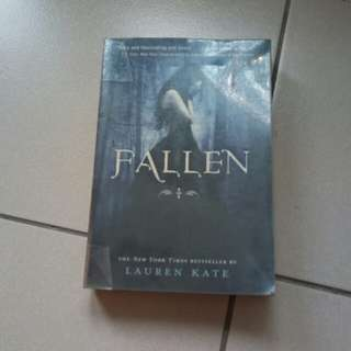 Fallen (preloved book)