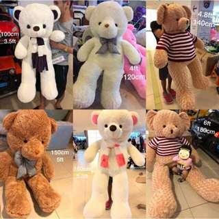 Life Sized Teddy Bear