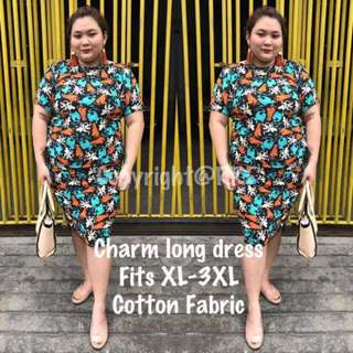 Plus Size Charm Dress