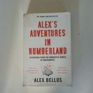 Alex's Adventures in Wonderland by Alex Bellos