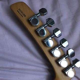 Parker Fly Guitar