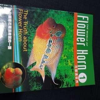Excellent Flower Horn Lohan Fish Magazinr