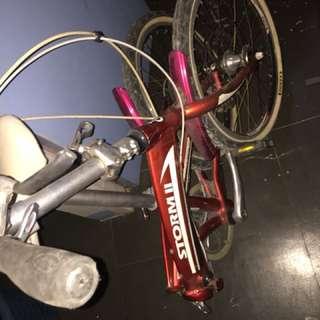 Storm folding bike