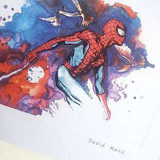 Rare! Spider-Man Lithographic Artpiece