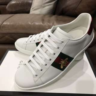 Gucci Ace Bee sneakers trainers 蜜蜂波鞋