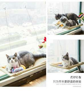 Cat Hammock instock now!!