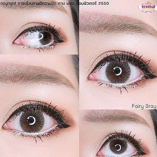 Fairy Grey- Thailand Cute Contact Lens
