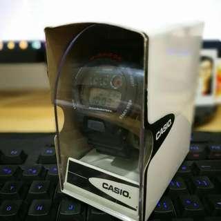 Casio G Shock DW-6900-1VSDR