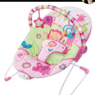 Pre Loved Baby Bouncher