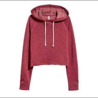 ready hnm crop hoodie